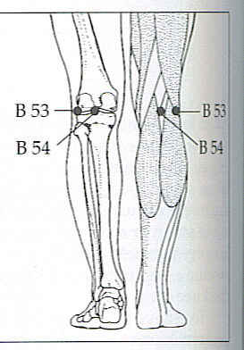 Important Acupressure Points for Back Pain