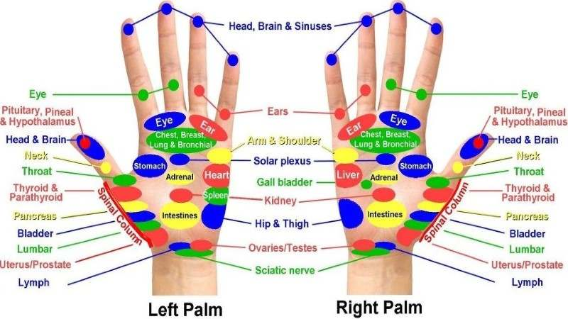 foot acupressure point chart: Acupressure points chart for relieving pain acupressure points
