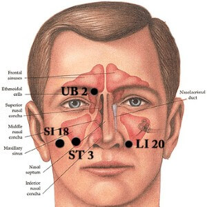 Facial Beauty Acupressure Point