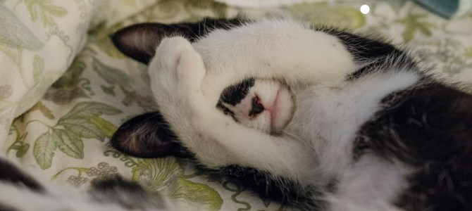 Insomnia: Tips for a better sleep