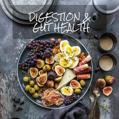 Digestion and Gut Health