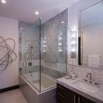 Frameless Shower Door System