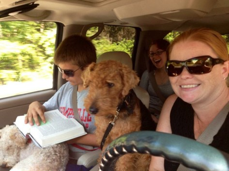 traveling terrier copilot