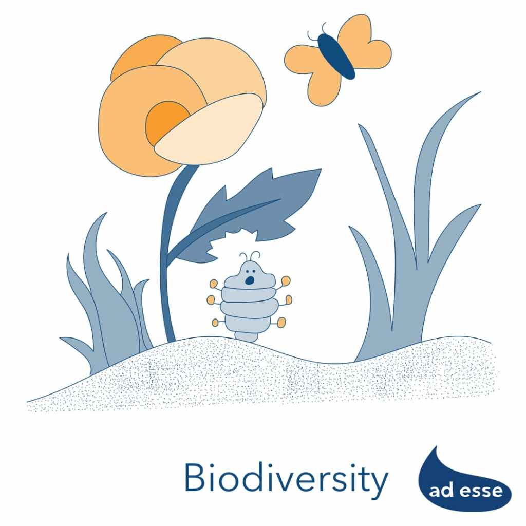 Ad Esse Consulting Our Planet Week biodiversity illustration for Ad Esse Fat Caterpillars