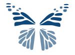 White butterfly illustration by Ad Esse Consulting