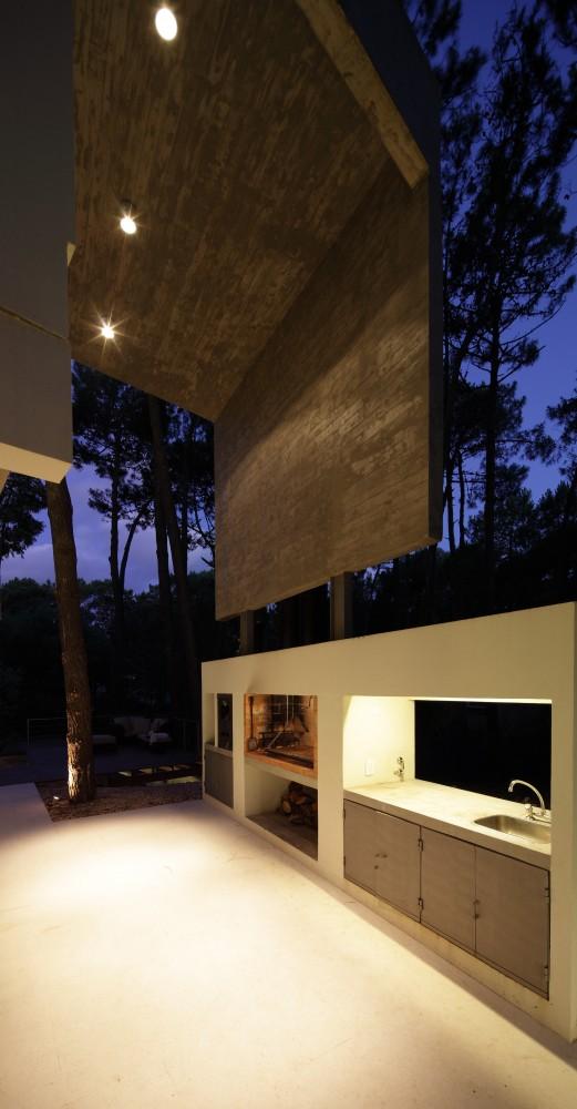 Fresno House / Felix Raspall + Federico Papandrea