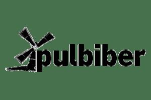 Pulbiber