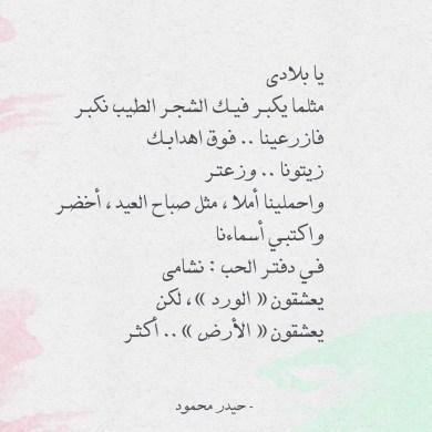 شعر حيدر محمود - قصيدة يا بلادي