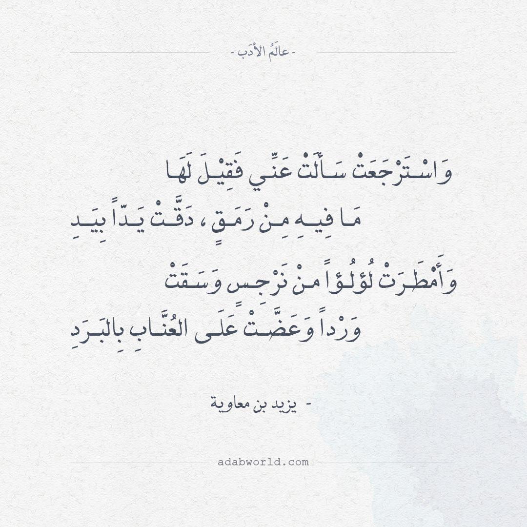 اجمل ابيات الغزل قيلت في الشعر ليزيد بن معاوية عالم الأدب
