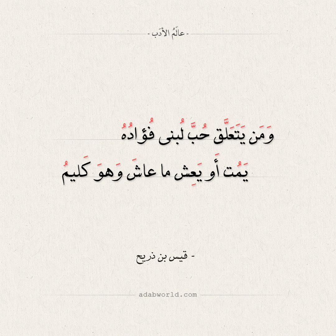شعر قيس بن ذريح - ومن يتعلق حب لبنى فؤاده