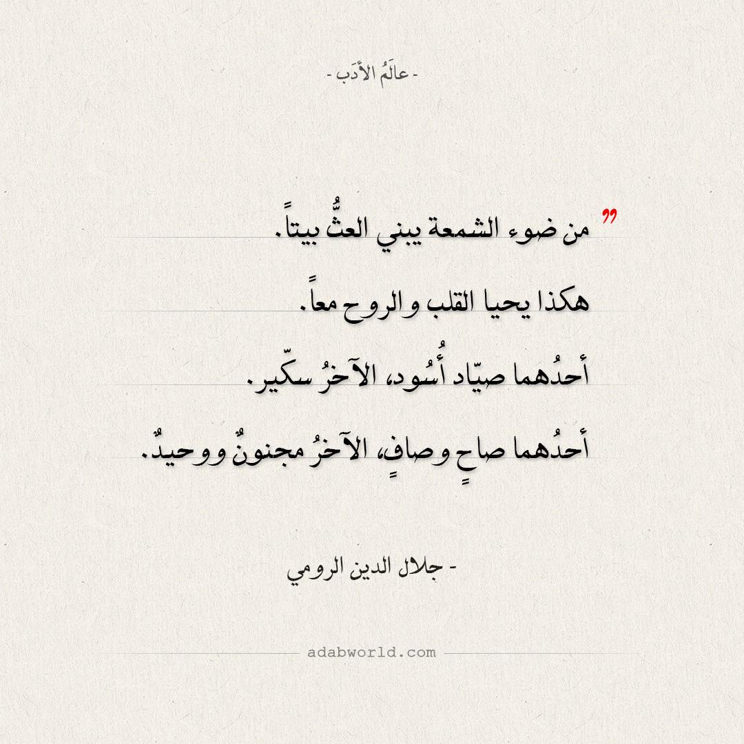 اقتباسات جلال الدين الرومي - هكذا يحيا القلب والروح معا