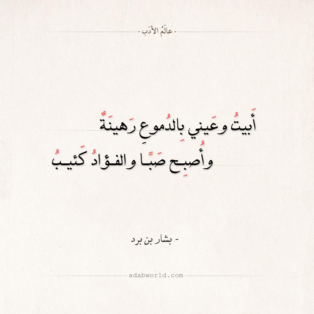 شعر بشار بن برد - أبيت وعيني بالدموع رهينة