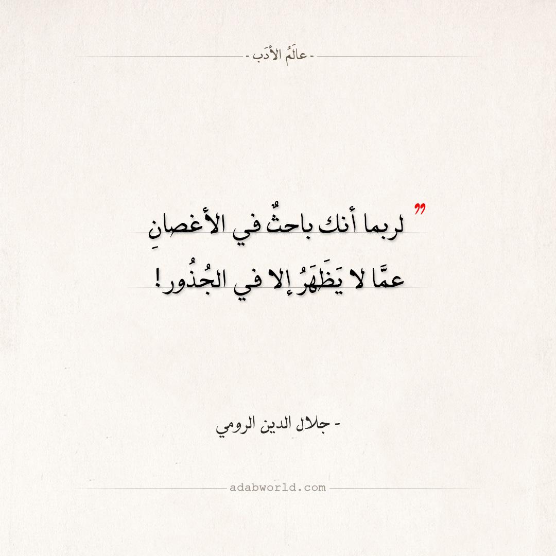 اقتباسات جلال الدين الرومي - الأغصان والجذور