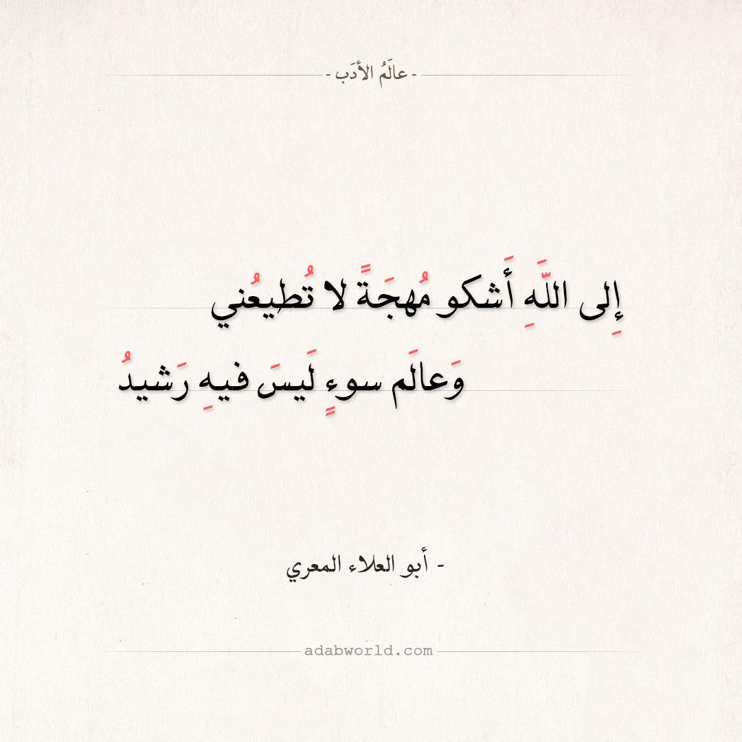 شعر أبو العلاء المعري - إلى الله أشكو مهجة لا تطيعني