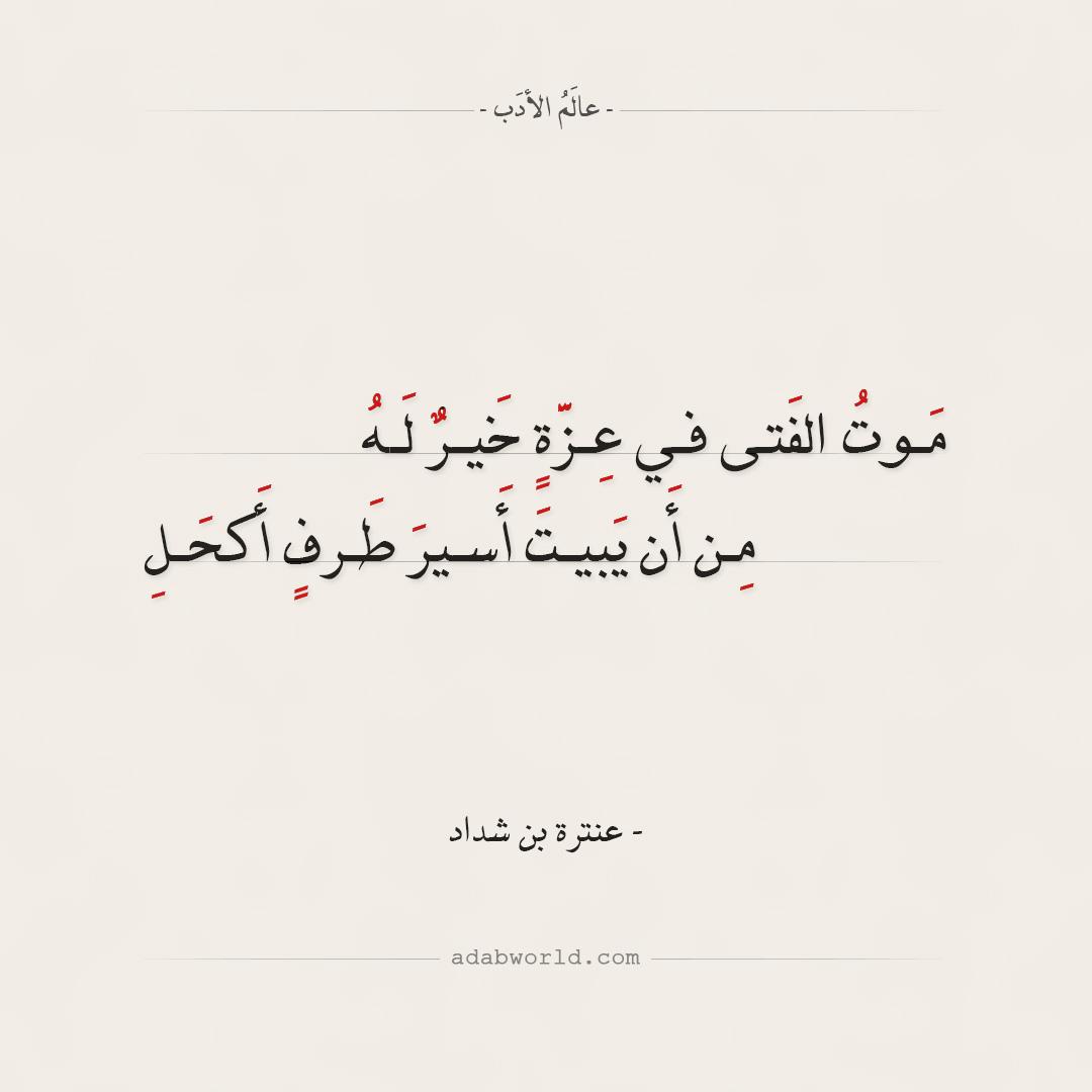 شعر عنترة بن شداد - موت الفتى في عزه خير له