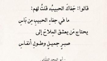 شعر أبو المجد النشابي - قالوا جفاك الحبيب قلت لهم