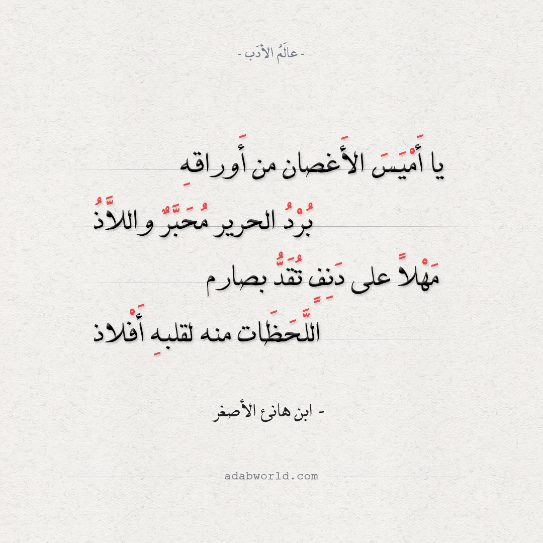 ابن هانئ الأصغر - يا أميس الأغان ومن أوراقه