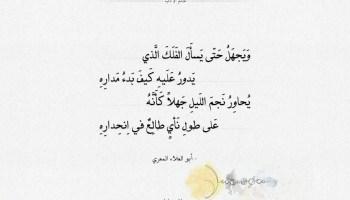 شعر أبو العلاء المعري - يقول لك العقل الذي بين الهدى