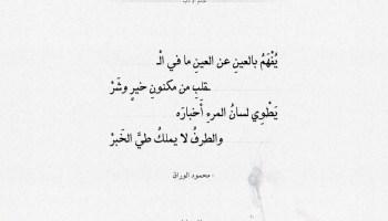 شعر محمود الوراق - يفهم بالعين عن العين ما في القلب