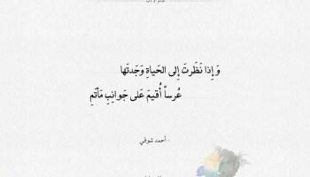 شعر أحمد شوقي إذا نظرت إلى الحياة