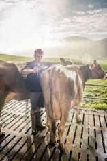 Waschgang: Bauer Jakob Fuster reinigt mit seinem Sohn Adrian und seinem Bruder Stefan die Miss-Anwärterin.