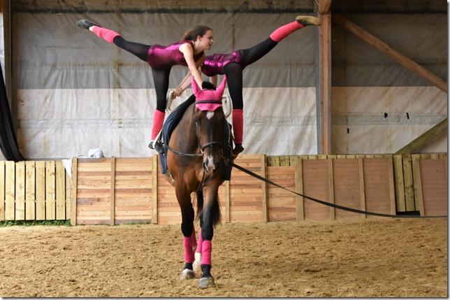 cheval en voltige 2