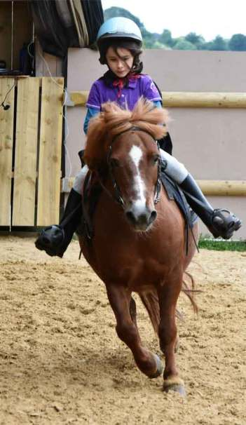 cavaliere a poney