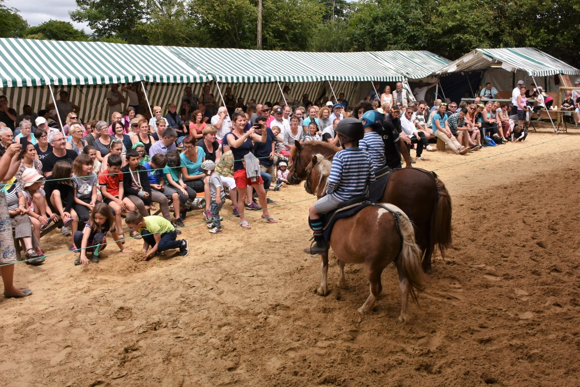 spectacle equestre eleves