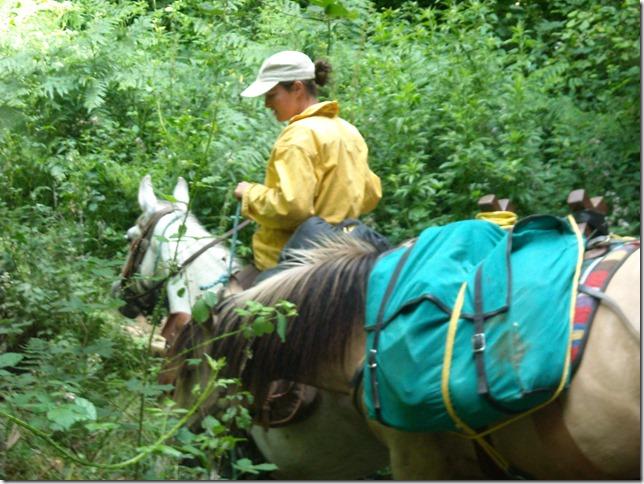 rando cheval 2