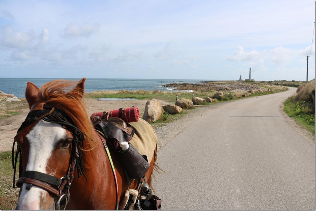 vacances poney