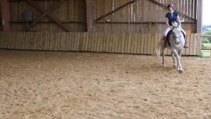 cheval incurvé