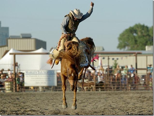 cowboy-1909926_640