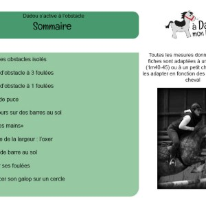 sommaire fiches obstacle
