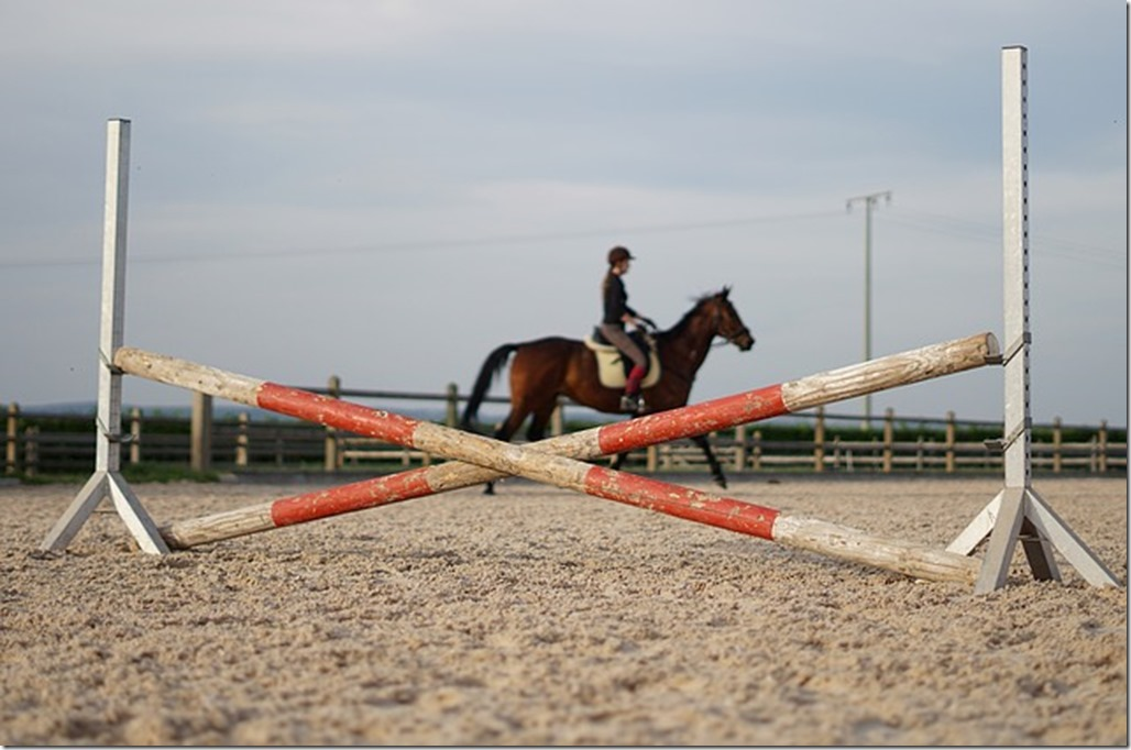 cheval obstacle charge croisillon