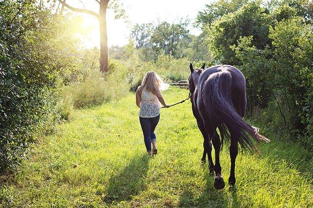 cavalière qui fait marcher son cheval en main