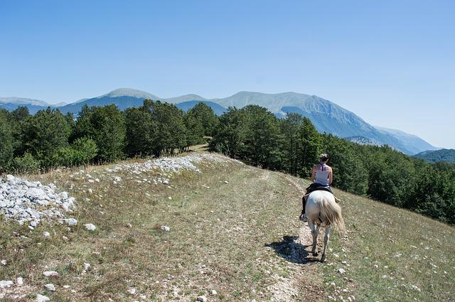 cheval sur un plan ascendant randonnée montagne