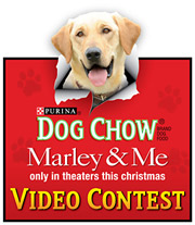 The deal includes integrations in nearly every communication for the brands, including a contest in which consumers can get videos of their own rascally dogs included on the 'Marley & Me' DVD, which comes out this spring.