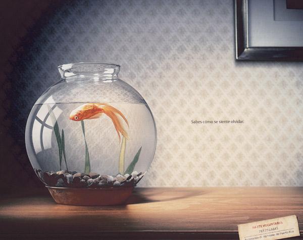 https://i1.wp.com/adage.com/images/random/1007/hisp07_magsilver_fish_big.jpg