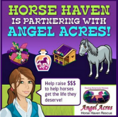 Horse Haven partners with Angel Acres and Facebook