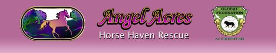 Horse Haven Logo