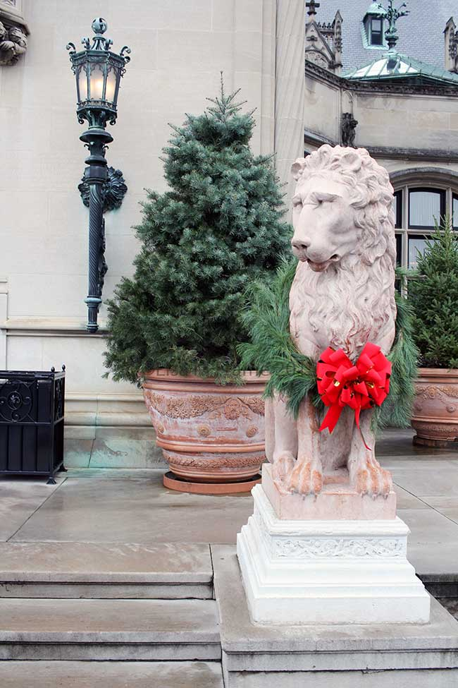 Biltmore House is ready for Christmas and invites everyone to visit the magic of Christmas with them this year!