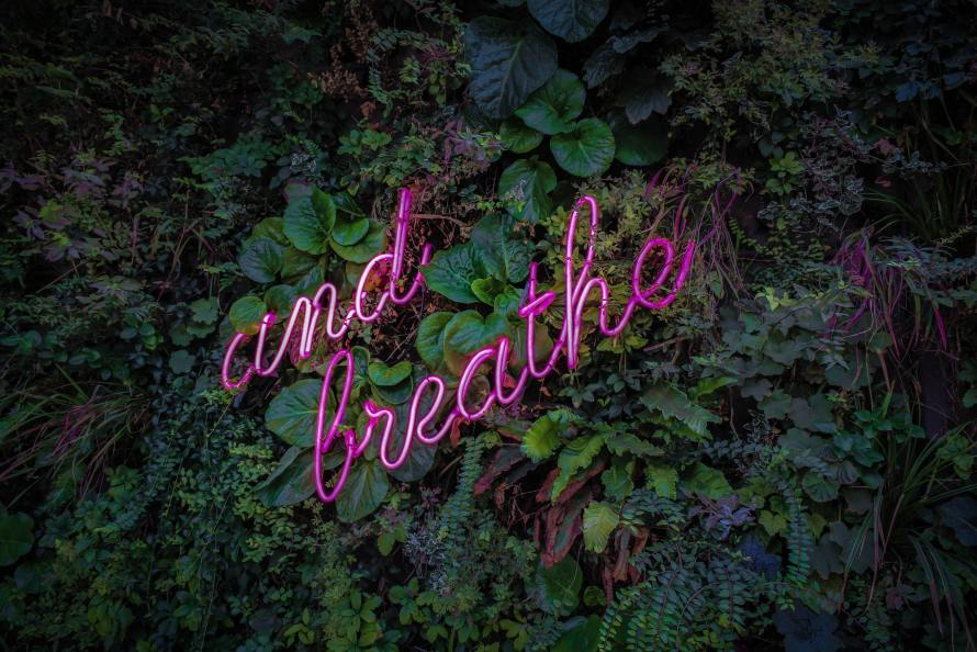 "Neon sign reading ""breath"" on a wall of green leaves"