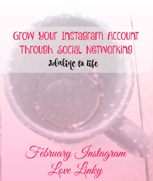 Adalinc to Life Instagram February Linky