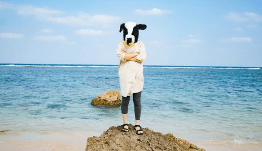 沖縄タマンを狙う計画①沖縄気候による場所選択の必要性