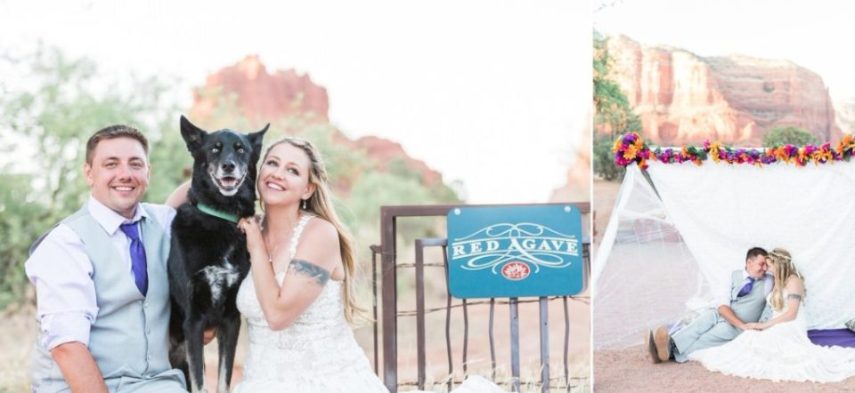 Pet friendly venues in Sedona