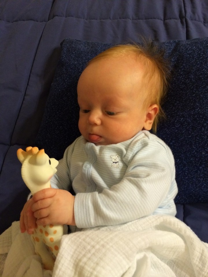 Jame is learning how to use his hands much better. He likes to hold his giraffe and try to eat it. He sticks his tongue out like a Huggard when he's concentrating!