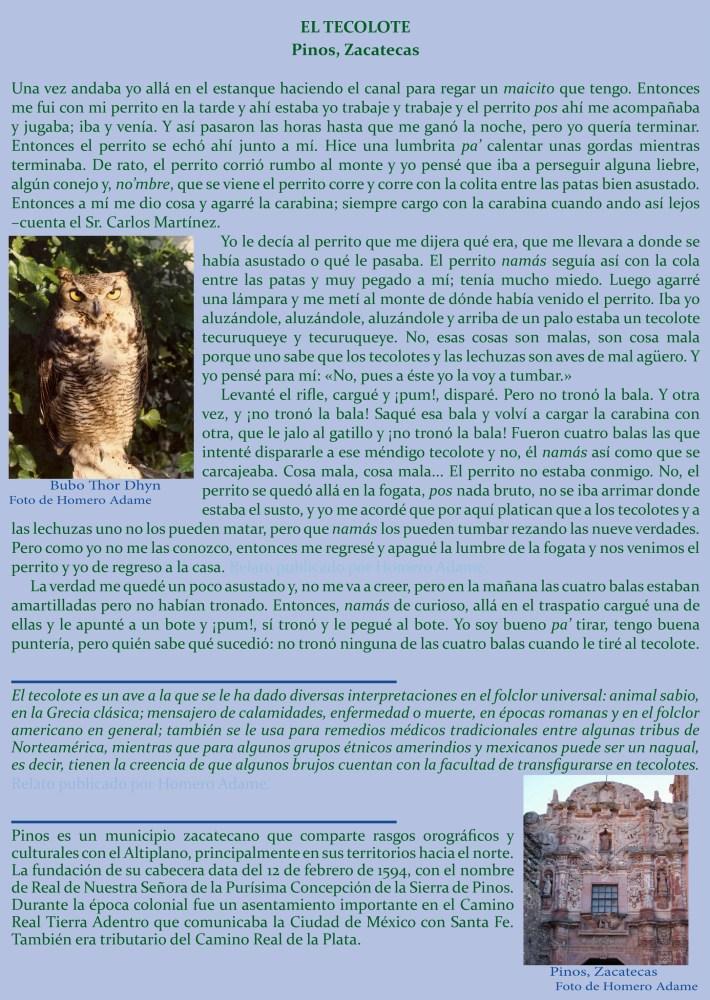 Supersticiones y leyendas de animales: El tecolote (1/2)