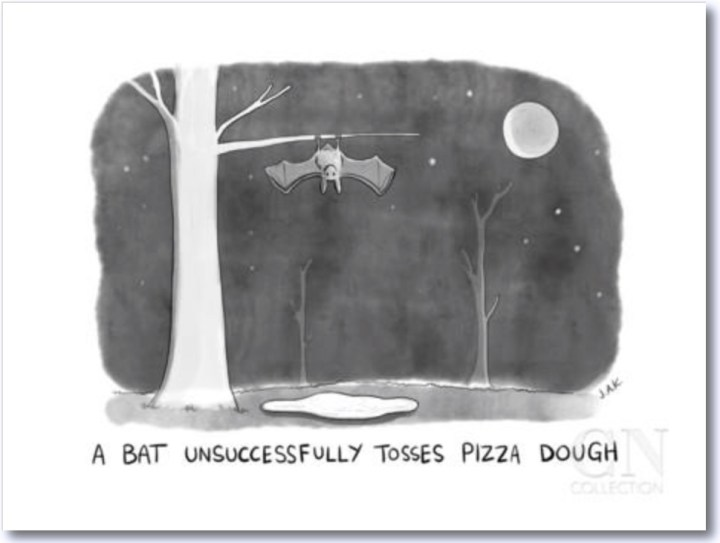 Cartoon: A Bat Unsuccessfully Tosses Pizza Dough