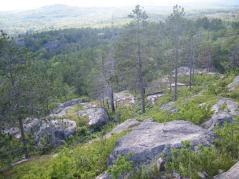 View atop Sugarloaf Mountain