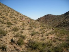 2011October00NMTrip_paleozoicTrackways03